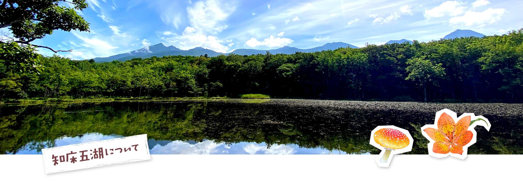 知床五湖について